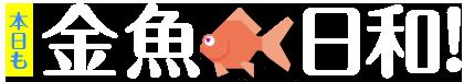 本日も金魚日和