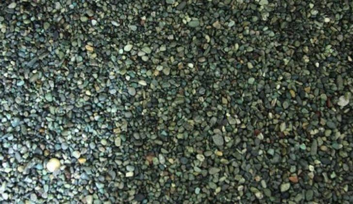 金魚に大磯砂