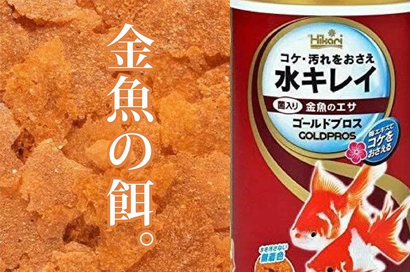 金魚の餌について
